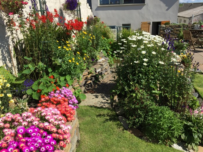 Annies Place garden July 2017