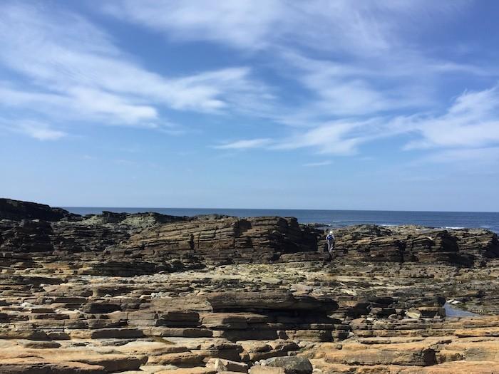 Coastal Walk B