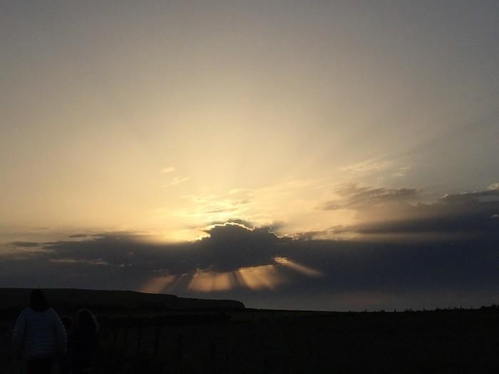 Puffin sky