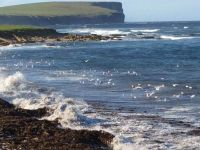 Marwick Head From Shoreline Seat